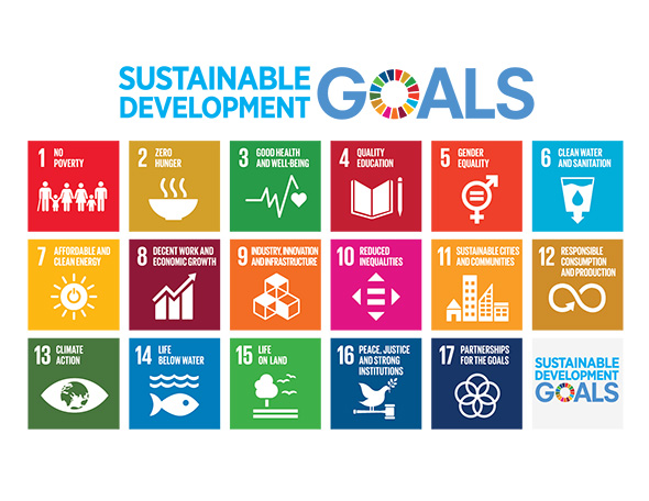 Sustainable Development Goals poster showing icons for each of the 17 goals
