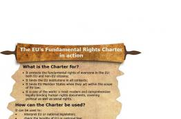The EU Fundamental Rights Charter in action