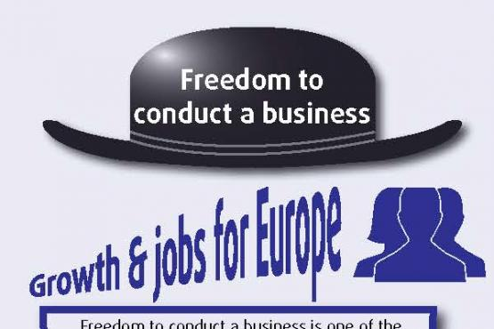 The freedom to conduct a business