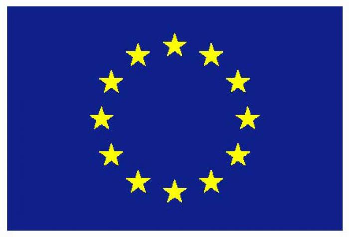 European Commission flag