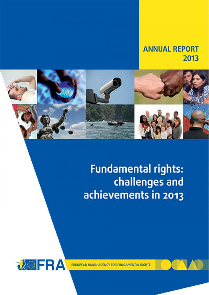 Fundamental rights: challenges and achievements in 2013 - Annual report 2013
