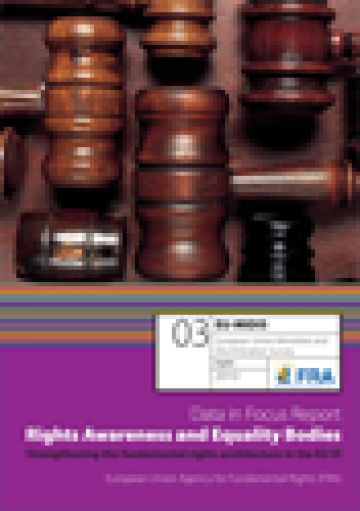 Cover of the EU-MIDIS Data in Focus 2