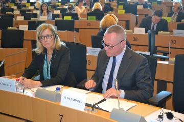 Michael O'Flaherty speaks at the Committee on Employment and Social Affairs, European Parliament