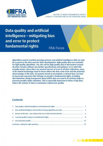 Data quality and artificial intelligence – mitigating bias and error to protect fundamental rights