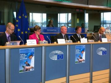 FRA Director took part in an exchange of views with the European Parliament's Employment and Social Affairs Committee