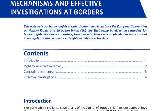 European standards on legal remedies, complaints mechanisms and effective investigations at borders