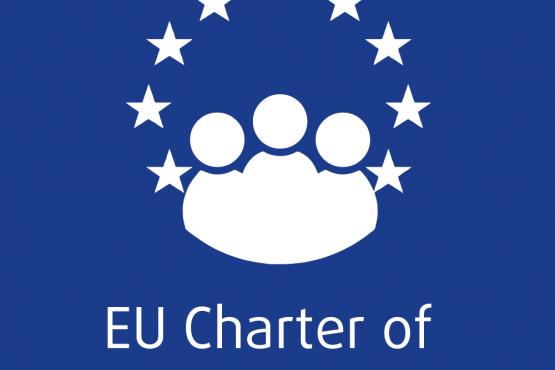 Votre pays fait-il une utilisation optimale de la charte des droits de l'UE ?
