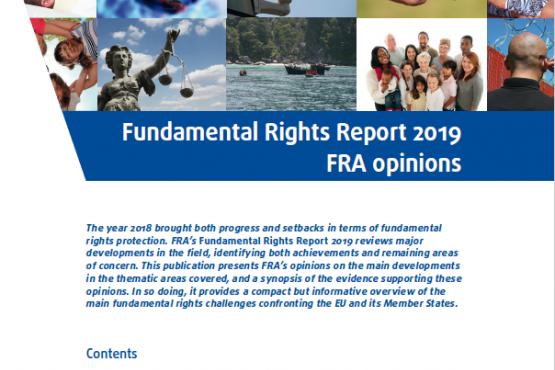 2019m. ataskaita apie pagrindinių teisių būklę - FRA nuomonės