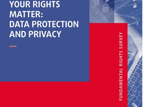 Your rights matter: Data protection and privacy - Fundamental Rights Survey