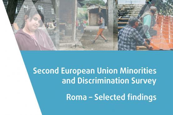 Den Europæiske Unions anden undersøgelse af mindretal og forskelsbehandling – Romaer – udvalgte resultater
