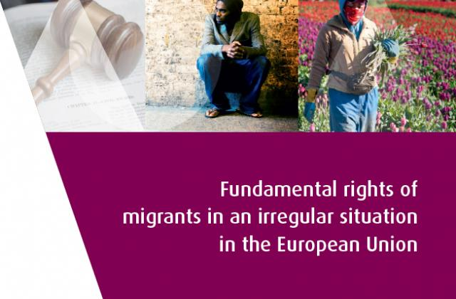 Fundamental rights of migrants in an irregular situation in the European Union