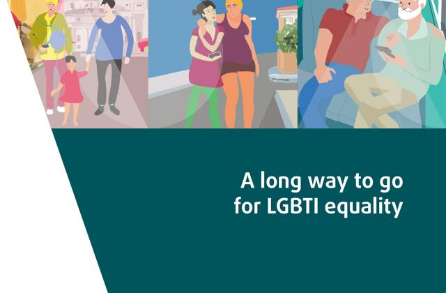 A long way to go for LGBTI equality - Technical report