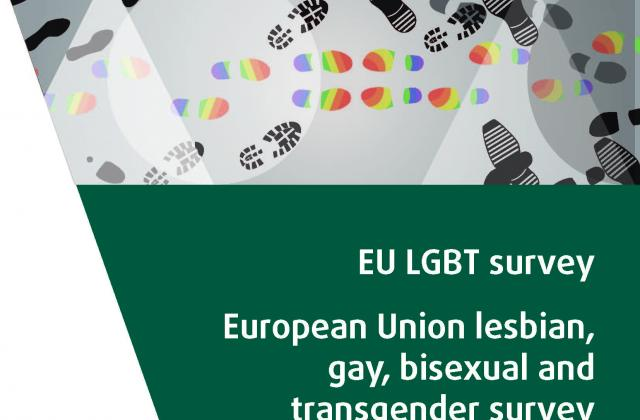 EU LGBT survey - European Union lesbian, gay, bisexual and transgender survey - Main results