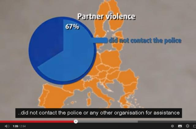 Violence against women survey