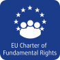 Challenges and opportunities for the implementation of the Charter of Fundamental Rights